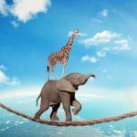 La confiance moteur de la coopération !